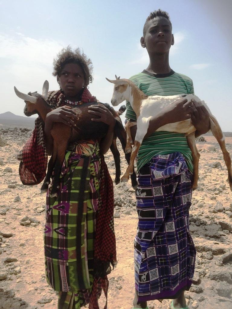 CGA Blog APDA Day 5 kids goat